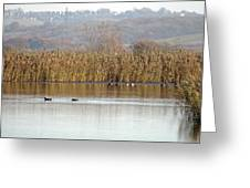 Otmoor Nature Reserve Greeting Card