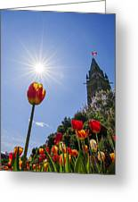 Ottawa Tulip Festival Greeting Card