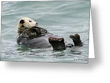 Otter At Play Greeting Card