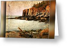 Otter Cliffs Acadia National Park Greeting Card
