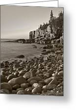 Otter Cliffs Black And White Greeting Card