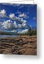 Otter Point Afternoon Greeting Card
