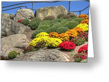 Ott's Greenhouse - Chrysanthemum Hill - Schwenksville - Pa Greeting Card