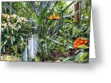 Otts Waterfall Room   Schwenksville Pennsylvania Usa Greeting Card