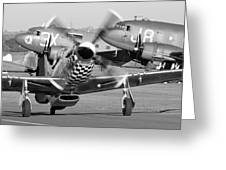 Our American Friends - Mustang And C-47 Troop Carriers Greeting Card
