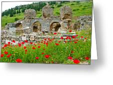 Our Entry Into Ephesus And Its Baths-turkey Greeting Card