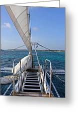 Out For A Sail Greeting Card