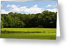 Out In The Country Greeting Card