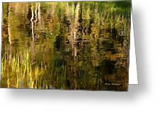 Out In The Reeds Greeting Card