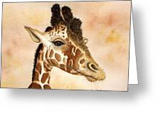 Out Of Africa's Giraffe Greeting Card