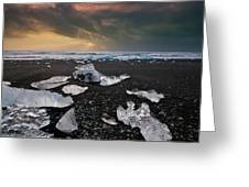 Out Of Place Greeting Card