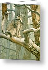 Out Of Reach - Lynx Greeting Card