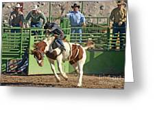 Out Of The Chute Greeting Card