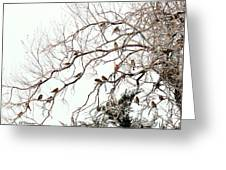 Out On A Limb First Snow Greeting Card