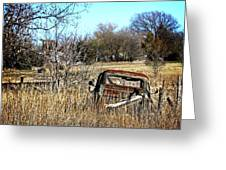 Out To Pasture 3 Greeting Card