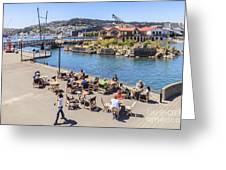 Outdoor Cafe Wellington New Zealand Greeting Card