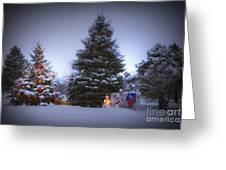 Outdoor Christmas Tree Greeting Card