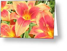 Outrageous Lilies Greeting Card