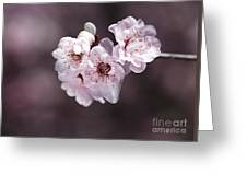 Over A Blossom Cloud Greeting Card
