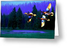 Over Duck Lake Greeting Card