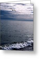 Over The Ocean Greeting Card