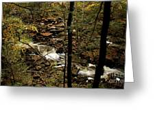 Over The River And Thru The Wood Greeting Card