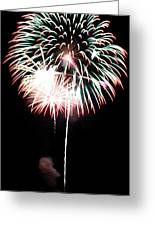 4th Of July Fireworks 4 Greeting Card by Howard Tenke