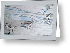 Overcast Day With Sanderlings Greeting Card