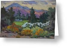 Overcast Light In Santa Barbara Greeting Card