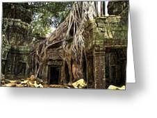 Overgrown Jungle Temple Tree  Greeting Card