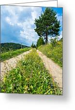 Overgrown Rural Path Up A Hill Greeting Card