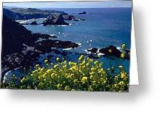 Overlook Point Greeting Card by Cole Black