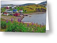 Overlooking Trinity-nl Greeting Card