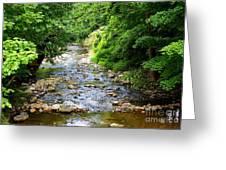 Owens Creek Greeting Card