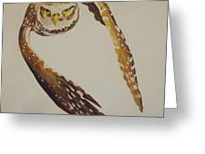Owl Attack Greeting Card