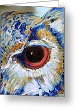 Owl Gaze Greeting Card