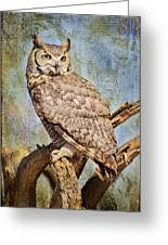 Owl On A Tree Greeting Card