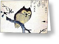 Owl On Tree Branch Greeting Card