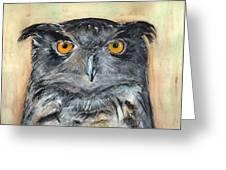 Owl Series - Owl 1 Greeting Card