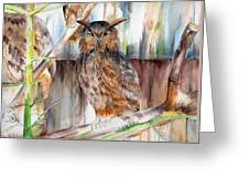 Owl Series - Owl 2 Greeting Card