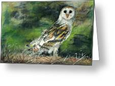 Owl Series - Owl 3 Greeting Card