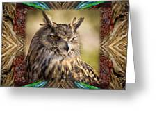 Owl With Collage Border Greeting Card