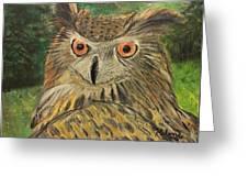 Owl With Orange Eyes Greeting Card