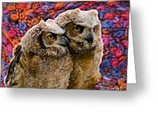 Owlets In Color Greeting Card
