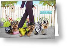 Owned By Yorkies Greeting Card