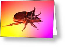 Ox Beetle In Color Greeting Card