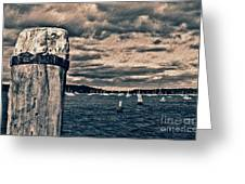 Oyster Bay Greeting Card