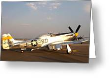 P-51 Mustang Fighter Aircraft Greeting Card