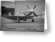 P-51d Spam Can Greeting Card