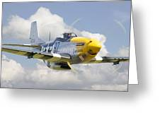 P51 Ferocious Frankie Greeting Card